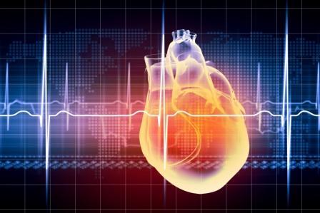 Cardiovascular mortality rate